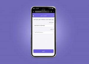 Wallet Access Guide 13